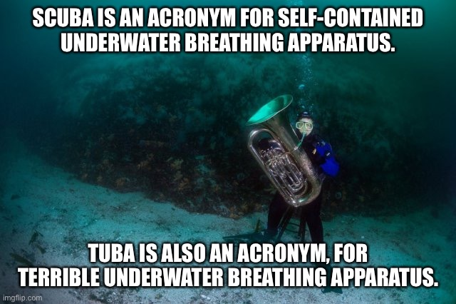 SCUBA TUBA |  SCUBA IS AN ACRONYM FOR SELF-CONTAINED UNDERWATER BREATHING APPARATUS. TUBA IS ALSO AN ACRONYM, FOR TERRIBLE UNDERWATER BREATHING APPARATUS. | image tagged in scuba diving | made w/ Imgflip meme maker