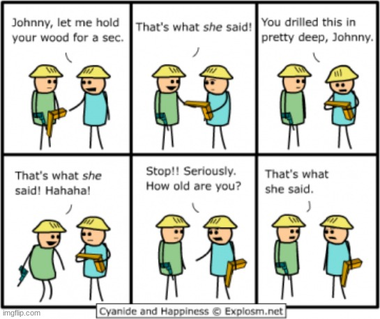 THAT'S WHAT SHE SAID | image tagged in comics/cartoons | made w/ Imgflip meme maker