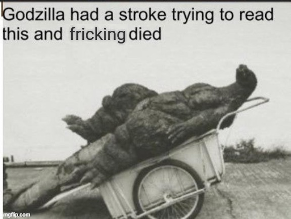 image tagged in godzilla had a stroke trying to read this and fricking died | made w/ Imgflip meme maker