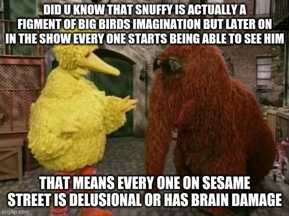 Big Bird And Snuffy |  DID U KNOW THAT SNUFFY IS ACTUALLY A FIGMENT OF BIG BIRDS IMAGINATION BUT LATER ON IN THE SHOW EVERY ONE STARTS BEING ABLE TO SEE HIM; THAT MEANS EVERY ONE ON SESAME STREET IS DELUSIONAL OR HAS BRAIN DAMAGE | image tagged in memes,big bird and snuffy | made w/ Imgflip meme maker