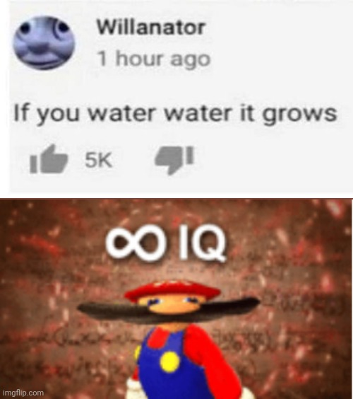 I mean he ain't wrong | image tagged in infinite iq,memes,funny,smg4 | made w/ Imgflip meme maker