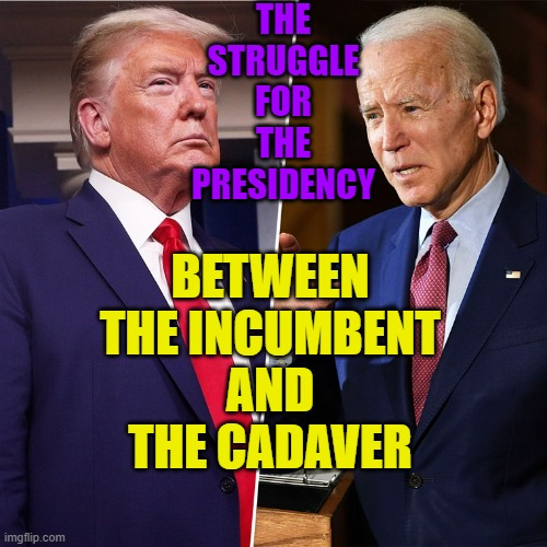 Great Choice... The struggle for the Presidency between the incumbent and the cadaver |  THE STRUGGLE FOR THE PRESIDENCY; BETWEEN THE INCUMBENT AND THE CADAVER | image tagged in trump biden | made w/ Imgflip meme maker