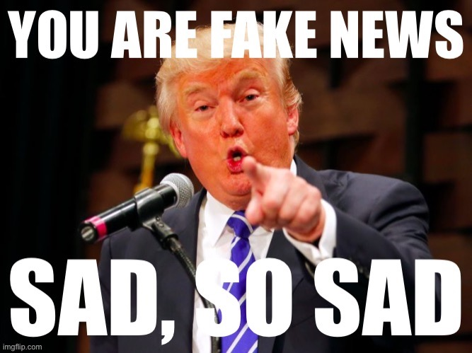 Donald Trump you are fake news | image tagged in fake news,you are fake news,donald trump,trump,donald trump pointing,custom template | made w/ Imgflip meme maker