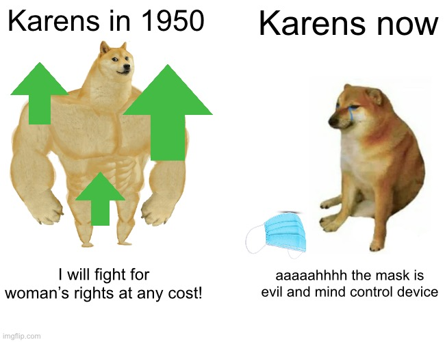 Buff Doge vs. Cheems |  Karens in 1950; Karens now; I will fight for woman's rights at any cost! aaaaahhhh the mask is evil and mind control device | image tagged in memes,buff doge vs cheems,karen,funny,funny memes | made w/ Imgflip meme maker