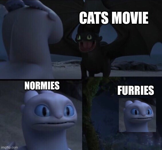 we can all agree that the cats movie is bad |  CATS MOVIE; NORMIES; FURRIES | image tagged in how to train your dragon 3 | made w/ Imgflip meme maker