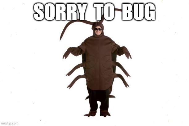 Sorry to Bug |  SORRY  TO  BUG | image tagged in funny memes,sorry not sorry,sorry,bugs,office humor,the office | made w/ Imgflip meme maker
