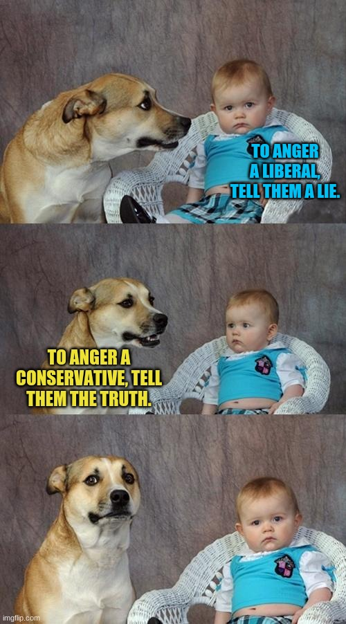Facts Matter. |  TO ANGER A LIBERAL, TELL THEM A LIE. TO ANGER A CONSERVATIVE, TELL THEM THE TRUTH. | image tagged in memes,dad joke dog | made w/ Imgflip meme maker