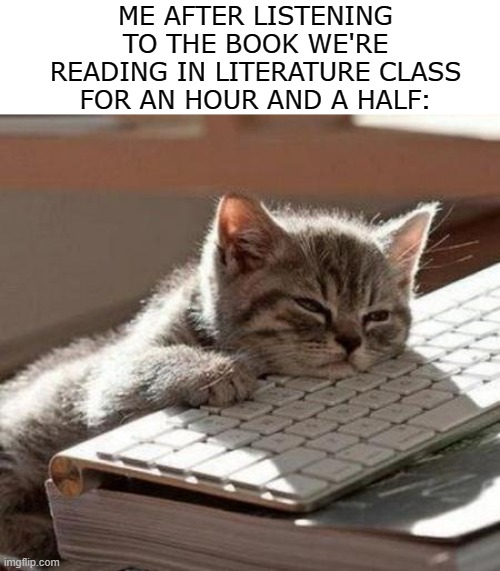 I'm not complaining! I just get a little sluggish. |  ME AFTER LISTENING TO THE BOOK WE'RE READING IN LITERATURE CLASS FOR AN HOUR AND A HALF: | image tagged in tired cat,memes,reading,book,literature,school | made w/ Imgflip meme maker