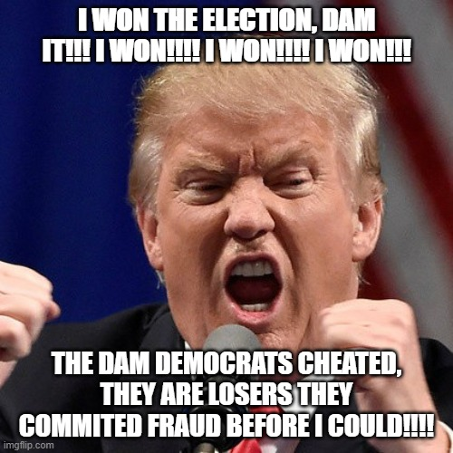 I WON THE ELECTION, DAM IT!!! I WON!!!! I WON!!!! I WON!!! THE DAM DEMOCRATS CHEATED, THEY ARE LOSERS THEY COMMITED FRAUD BEFORE I COULD!!!! | made w/ Imgflip meme maker