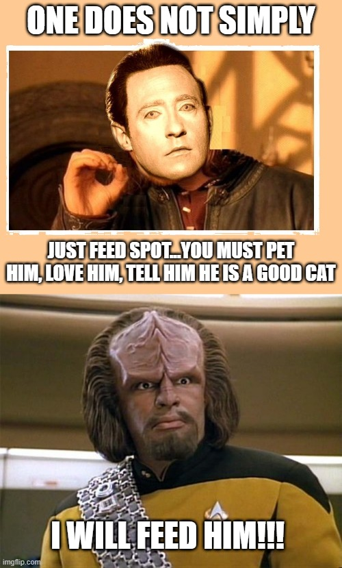 Data and His Cat |  ONE DOES NOT SIMPLY; JUST FEED SPOT...YOU MUST PET HIM, LOVE HIM, TELL HIM HE IS A GOOD CAT; I WILL FEED HIM!!! | image tagged in star trek data does not simply,worf star trek | made w/ Imgflip meme maker