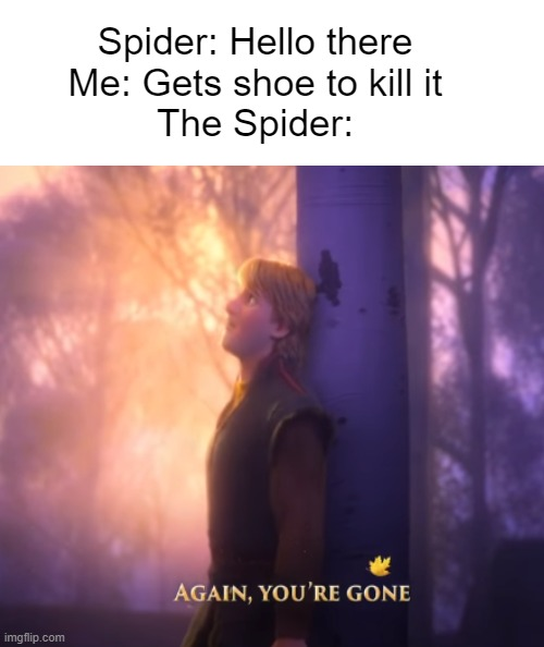 Lost in the Room |  Spider: Hello there Me: Gets shoe to kill it The Spider: | image tagged in frozen 2,lost in the woods,spiders | made w/ Imgflip meme maker