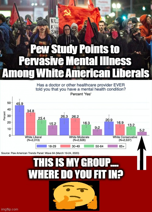 Is Liberalism Truly A Mental Disorder? |  Pew Study Points to  Pervasive Mental Illness  Among White American Liberals; THIS IS MY GROUP.... WHERE DO YOU FIT IN? | image tagged in politics,political meme,democratic socialism,liberalism,mental illness,antifa/blm | made w/ Imgflip meme maker
