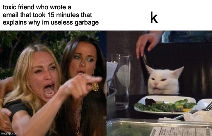 k |  toxic friend who wrote a email that took 15 minutes that explains why im useless garbage; k | image tagged in memes,woman yelling at cat | made w/ Imgflip meme maker