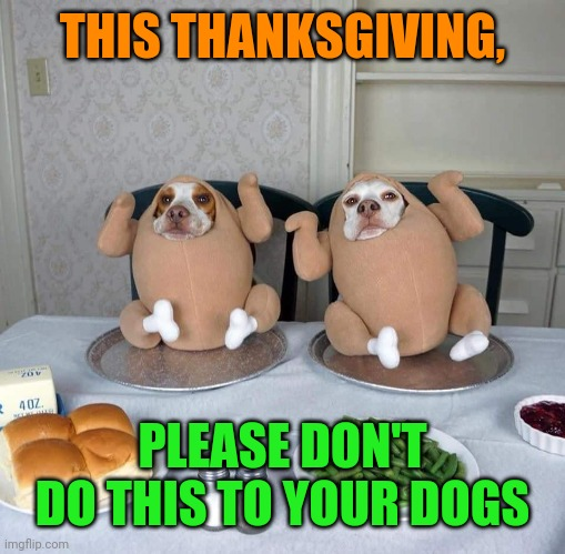 Turkey Dogs |  THIS THANKSGIVING, PLEASE DON'T DO THIS TO YOUR DOGS | image tagged in thanksgiving,turkey,dogs,funny,costumes | made w/ Imgflip meme maker