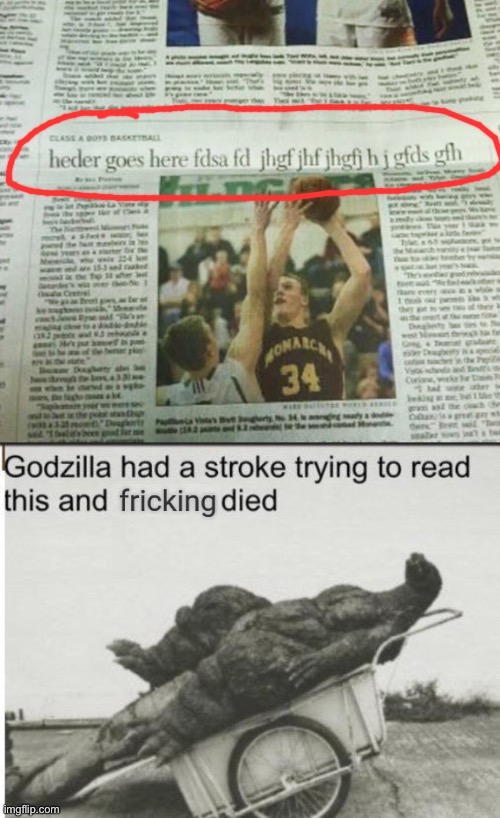 WHAT | image tagged in godzilla had a stroke trying to read this and fricking died,memes,you had one job,wtf,newspaper,what the heck happened here | made w/ Imgflip meme maker