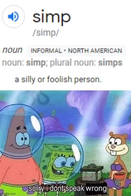 dictionary is wrong | image tagged in sorry i dont speak wrong,simp,funny,memes,dictionary | made w/ Imgflip meme maker