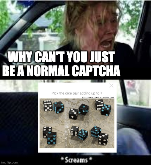why roblox captcha... |  WHY CAN'T YOU JUST BE A NORMAL CAPTCHA | image tagged in why cant you just be normal | made w/ Imgflip meme maker