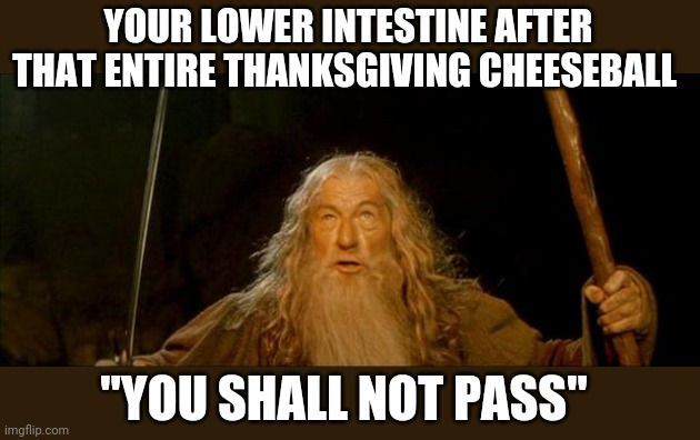 "gandalf you shall not pass |  YOUR LOWER INTESTINE AFTER THAT ENTIRE THANKSGIVING CHEESEBALL; ""YOU SHALL NOT PASS"" 