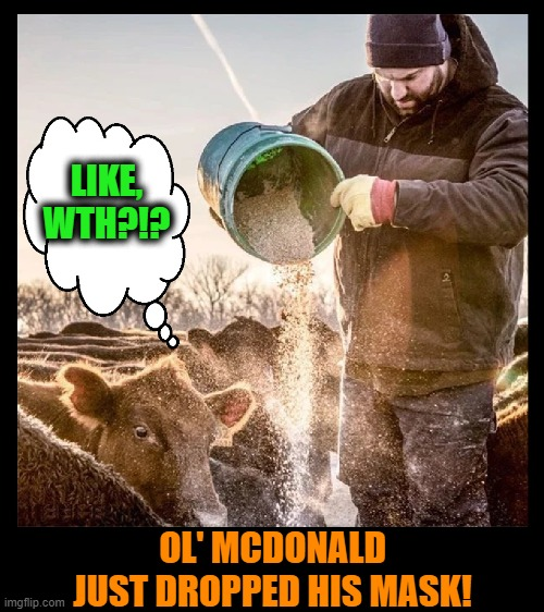 Is this Mad Cow? |  LIKE, WTH?!? OL' MCDONALD JUST DROPPED HIS MASK! | image tagged in cows,funny animals,pandemic,masks,covid-19,coronavirus | made w/ Imgflip meme maker