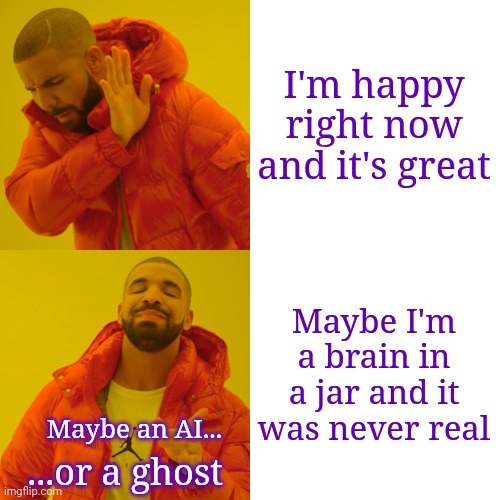 People like me overthinking it |  I'm happy right now and it's great; Maybe I'm a brain in a jar and it was never real; Maybe an AI... ...or a ghost | image tagged in memes,drake hotline bling,reality,sudden realization,when you realize | made w/ Imgflip meme maker