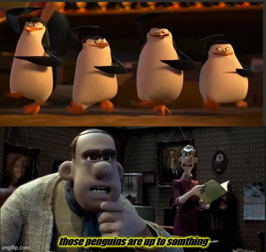 penguins do nothing |  those penguins are up to somthing | image tagged in those chickens are up to something | made w/ Imgflip meme maker