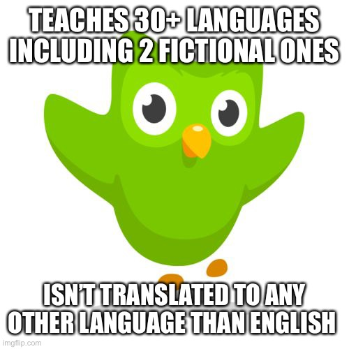things duolingo teaches you |  TEACHES 30+ LANGUAGES INCLUDING 2 FICTIONAL ONES; ISN'T TRANSLATED TO ANY OTHER LANGUAGE THAN ENGLISH | image tagged in things duolingo teaches you,interesting | made w/ Imgflip meme maker