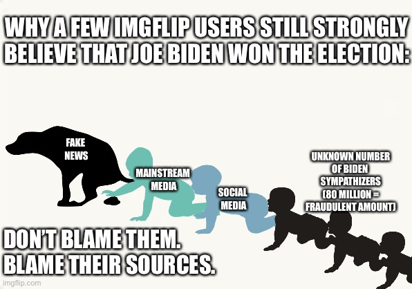 Democrats News Sources |  WHY A FEW IMGFLIP USERS STILL STRONGLY BELIEVE THAT JOE BIDEN WON THE ELECTION:; FAKE  NEWS; UNKNOWN NUMBER OF BIDEN  SYMPATHIZERS (80 MILLION = FRAUDULENT AMOUNT); MAINSTREAM  MEDIA; SOCIAL  MEDIA; DON'T BLAME THEM.  BLAME THEIR SOURCES. | image tagged in fake news,biden sympathizers,election fraud | made w/ Imgflip meme maker