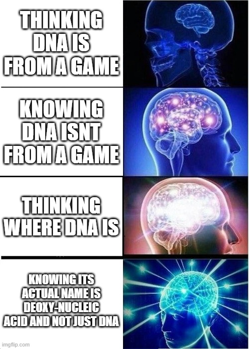DNA= DEOXY-NEUCLEIC ACID |  THINKING DNA IS FROM A GAME; KNOWING DNA ISNT FROM A GAME; THINKING WHERE DNA IS; KNOWING ITS ACTUAL NAME IS DEOXY-NUCLEIC ACID AND NOT JUST DNA | image tagged in memes,expanding brain,yeah this is big brain time | made w/ Imgflip meme maker