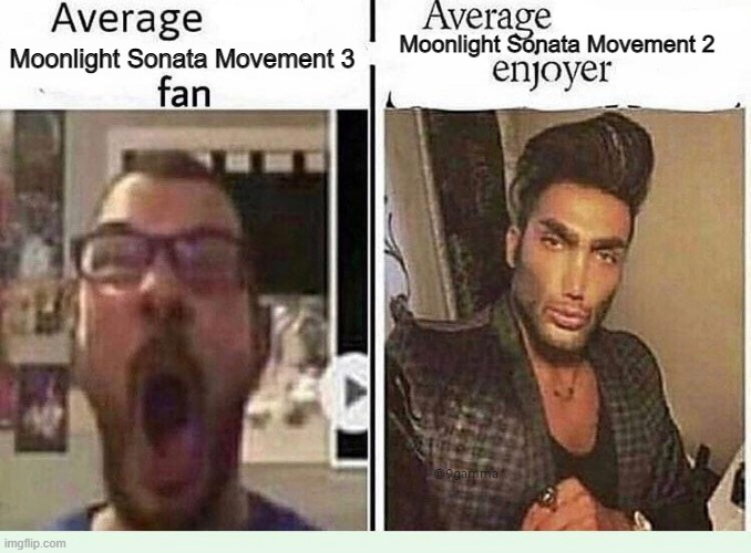 Moonlight Sonata |  Moonlight Sonata Movement 2; Moonlight Sonata Movement 3 | image tagged in average blank fan vs average blank enjoyer | made w/ Imgflip meme maker