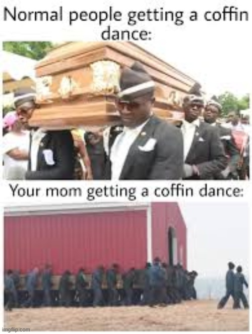 image tagged in coffin dance,mom | made w/ Imgflip meme maker