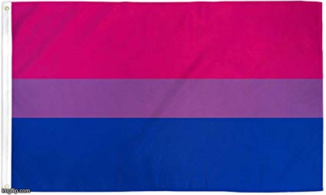 Bisexual Flag | image tagged in bisexual flag | made w/ Imgflip meme maker