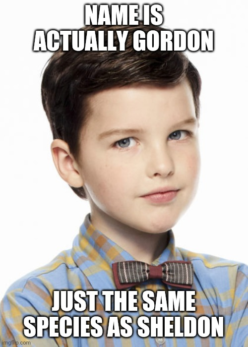 Just took 2 seasons to get around to telling us |  NAME IS ACTUALLY GORDON; JUST THE SAME SPECIES AS SHELDON | image tagged in young sheldon,mandalorian,baby yoda | made w/ Imgflip meme maker