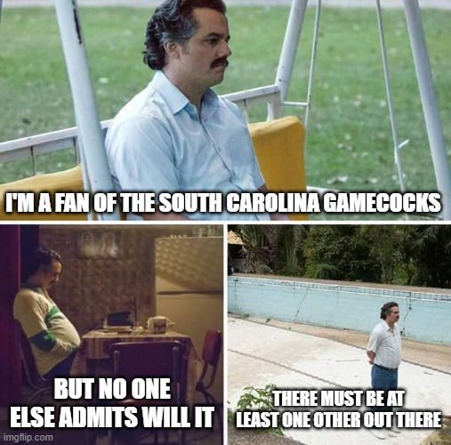 Sad Pablo Escobar |  I'M A FAN OF THE SOUTH CAROLINA GAMECOCKS; BUT NO ONE ELSE ADMITS WILL IT; THERE MUST BE AT LEAST ONE OTHER OUT THERE | image tagged in memes,sad pablo escobar | made w/ Imgflip meme maker