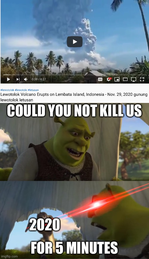 2020 NEEDS TO STOP |  COULD YOU NOT KILL US; 2020; FOR 5 MINUTES | image tagged in shrek 5 minutes,2020,2020 sucks,memes | made w/ Imgflip meme maker