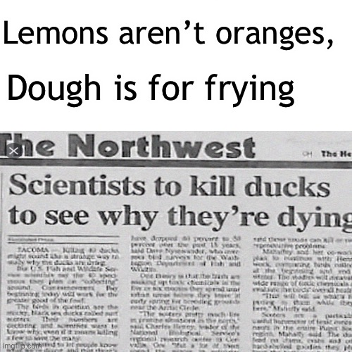 Stupid Headline Rhyme |  Lemons aren't oranges, Dough is for frying | image tagged in surprised pikachu,funny,headline | made w/ Imgflip meme maker
