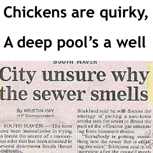 Stupidity at Its Finest |  Chickens are quirky, A deep pool's a well | image tagged in funny,headline,fun | made w/ Imgflip meme maker