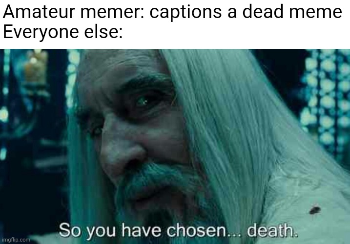 So you have chosen death |  Amateur memer: captions a dead meme Everyone else: | image tagged in so you have chosen death | made w/ Imgflip meme maker