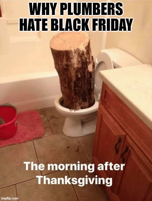 Black Friday |  WHY PLUMBERS HATE BLACK FRIDAY | image tagged in toilet,black friday,plumber,clogged toilet,crap | made w/ Imgflip meme maker