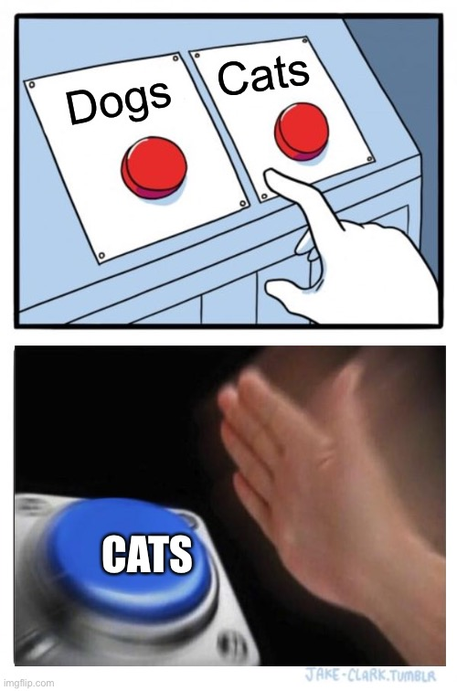 Two Buttons |  Cats; Dogs; CATS | image tagged in memes,two buttons | made w/ Imgflip meme maker