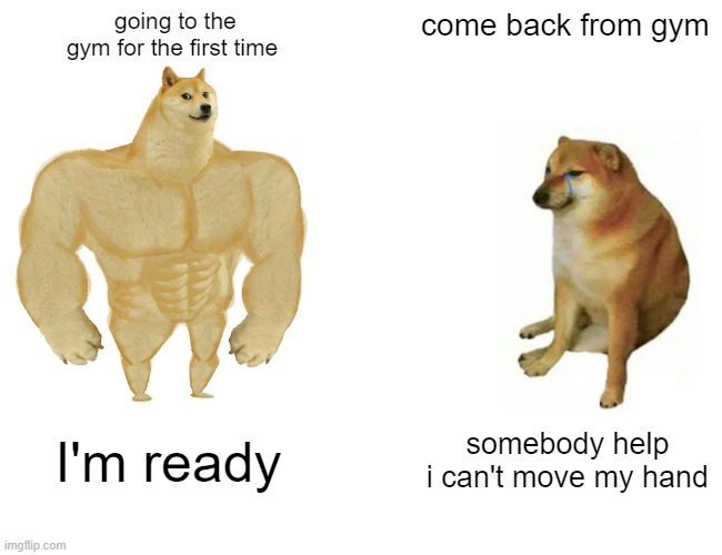 Buff Doge vs. Cheems |  going to the gym for the first time; come back from gym; I'm ready; somebody help i can't move my hand | image tagged in memes,buff doge vs cheems,gym,pain,first time,hurt | made w/ Imgflip meme maker