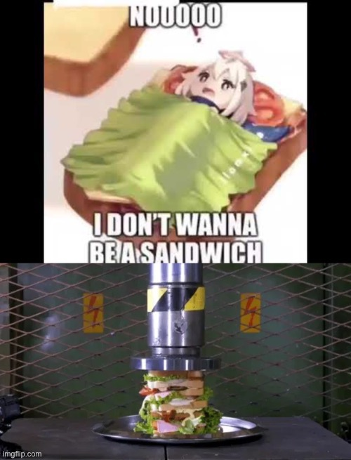image tagged in genshin impact,sandwich,kill,anime | made w/ Imgflip meme maker