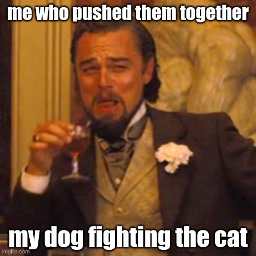 Laughing Leo |  me who pushed them together; my dog fighting the cat | image tagged in memes,laughing leo,dog,cat,fighting,funny | made w/ Imgflip meme maker