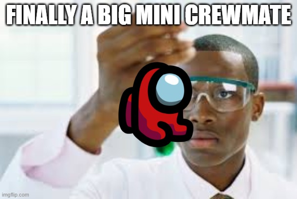 FINALLY |  FINALLY A BIG MINI CREWMATE | image tagged in finally | made w/ Imgflip meme maker