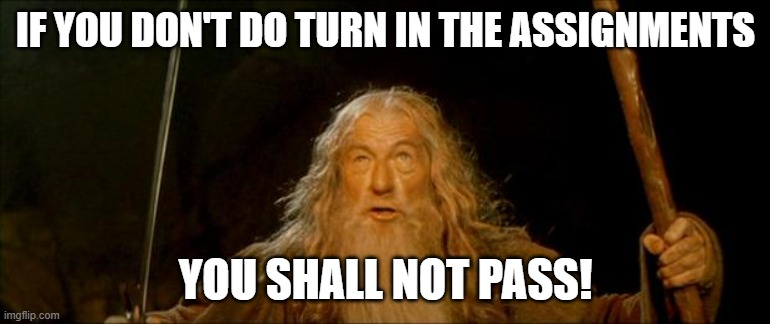 Turn In Your Work |  IF YOU DON'T DO TURN IN THE ASSIGNMENTS; YOU SHALL NOT PASS! | image tagged in gandalf you shall not pass,school,homework,funny,funny homework,fail | made w/ Imgflip meme maker