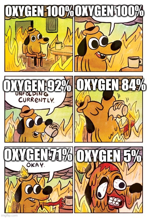 This is Fine Dog |  OXYGEN 100%; OXYGEN 100%; OXYGEN 84%; OXYGEN 92%; OXYGEN 5%; OXYGEN 71% | image tagged in this is fine dog | made w/ Imgflip meme maker