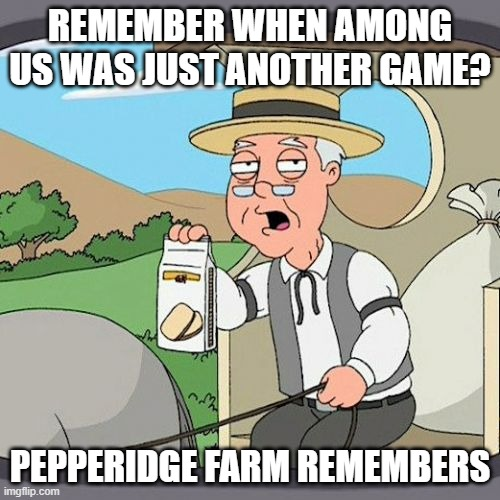 Pepperidge Farm Remembers Meme |  REMEMBER WHEN AMONG US WAS JUST ANOTHER GAME? PEPPERIDGE FARM REMEMBERS | image tagged in memes,pepperidge farm remembers,among us | made w/ Imgflip meme maker