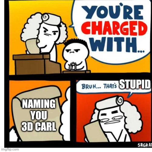 NAMING YOU 3D CARL STUPID | image tagged in you're charged with | made w/ Imgflip meme maker
