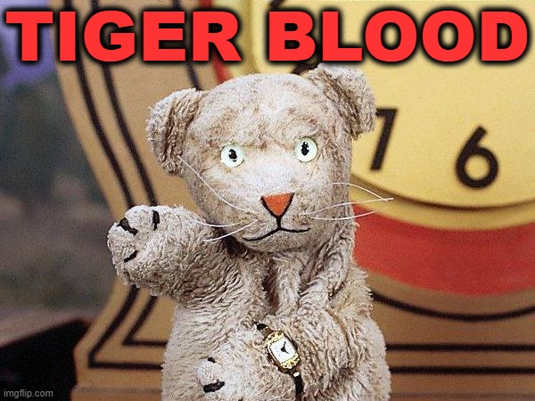 Daniel Tiger |  TIGER BLOOD | image tagged in mr rogers,daniel tiger,tiger blood,sock puppet | made w/ Imgflip meme maker