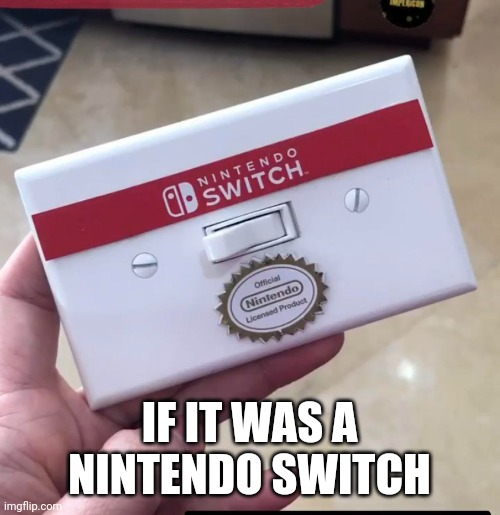 If this was a real nintendo Switch |  IF IT WAS A NINTENDO SWITCH | image tagged in nintendo switch,funny,memes | made w/ Imgflip meme maker