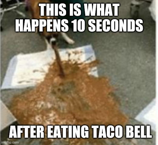 It's true tho |  THIS IS WHAT HAPPENS 10 SECONDS; AFTER EATING TACO BELL | image tagged in so true,gross,taco bell | made w/ Imgflip meme maker